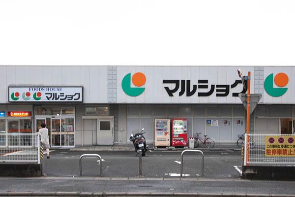 spot_marusyoku